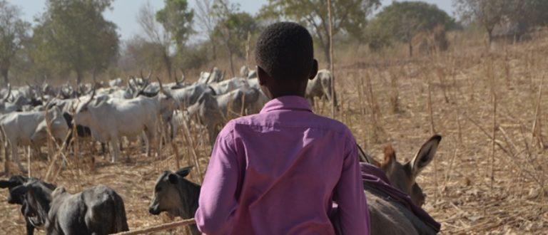 Article : #Mondochallenge : Les enfants « restés », un esclavagisme moderne très répandu au Tchad